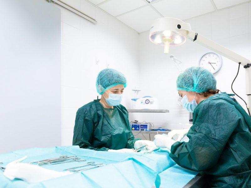 canaletes-veterinari-cirugia (1)